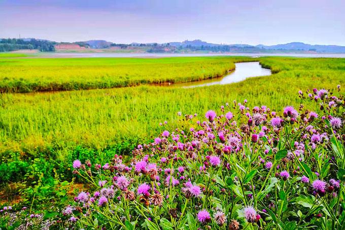 康养+艺术+运动 新兴文旅小镇就在云竹湖畔