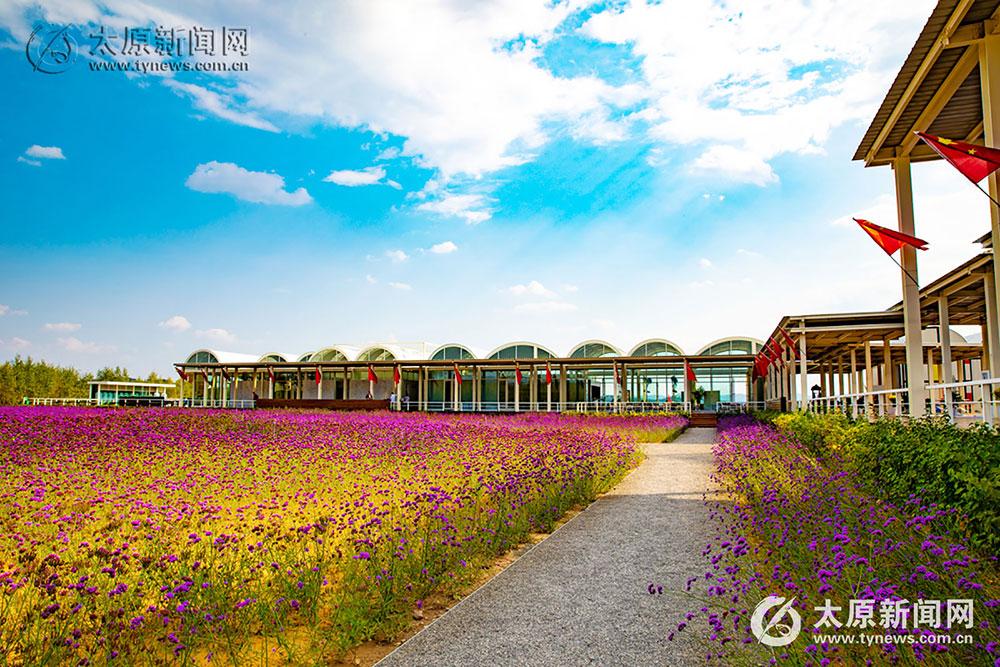 【图集】黄土高原上举办国际涂鸦大赛  云竹湖打造涂鸦圣地